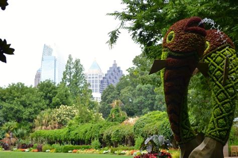 Home Decor Stores Birmingham Al by Atlanta Botanical Gardens Tickets Chihuly In The Garden