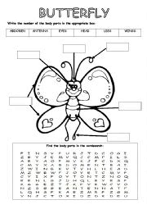 butterfly parts worksheet pictures to pin on