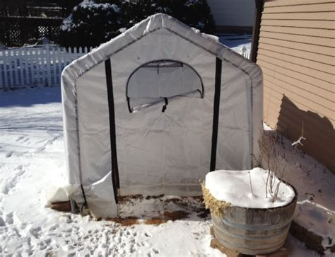 how to potty a shelter winter house potty shelters midwest italian greyhound rescue