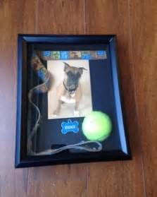 memory ls for deceased shadow box in memory of a pet shadow boxes