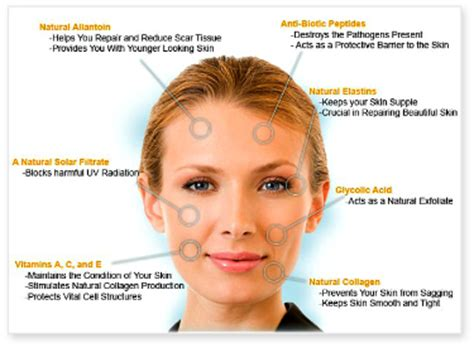 best anti aging treatments anti aging treatment fact sheet on the best anti aging