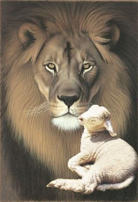 the lion amp the lamb crafts pinterest lambs and lions
