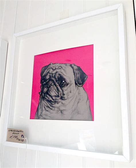 pug prices uk pug stuff prices from 3 75