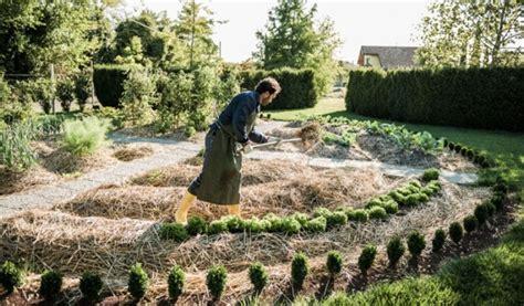 giardino sinergico l orto sinergico ecco come farlo l orto di bea e gaia