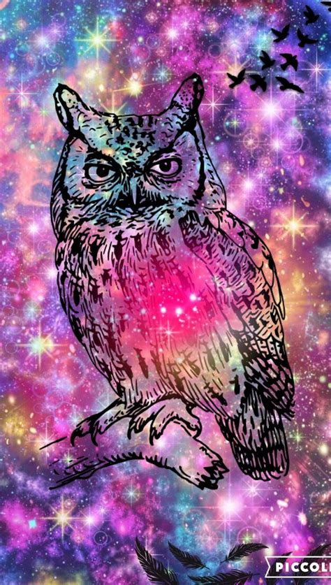 wallpaper for iphone 6 owl 17 best images about owl wallpaper on pinterest iphone