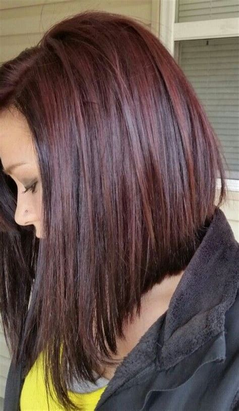 chocolate hair color with highlights for angled bobs 10 best ideas about angled bobs on pinterest angle bob
