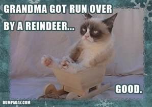grumpy cat christmas grandma got run over by a reindeer good