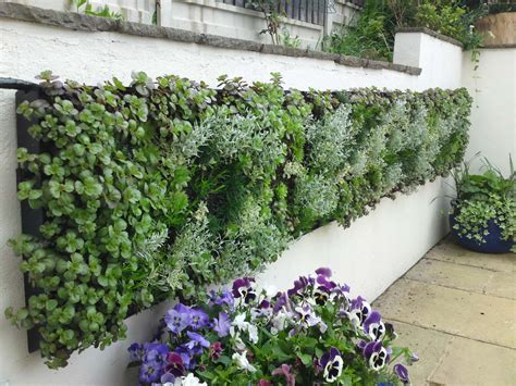 Vertical Garden Living Walls Vertical Gardens Car Interior Design