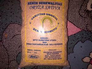 Pupuk Kalsium Murni 99 benih padi kios pupuk distributor pupuk jual pupuk