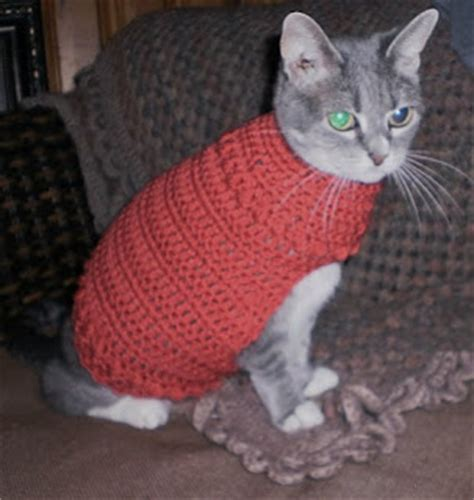 pattern knit cat sweater crochet a sweater for your cat free patterns
