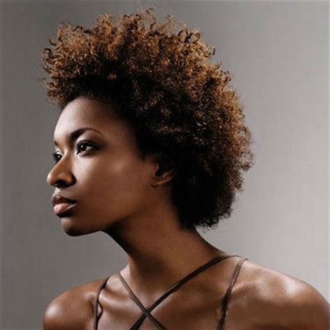 natural african american hair style the african american natural hairstyle chronicles