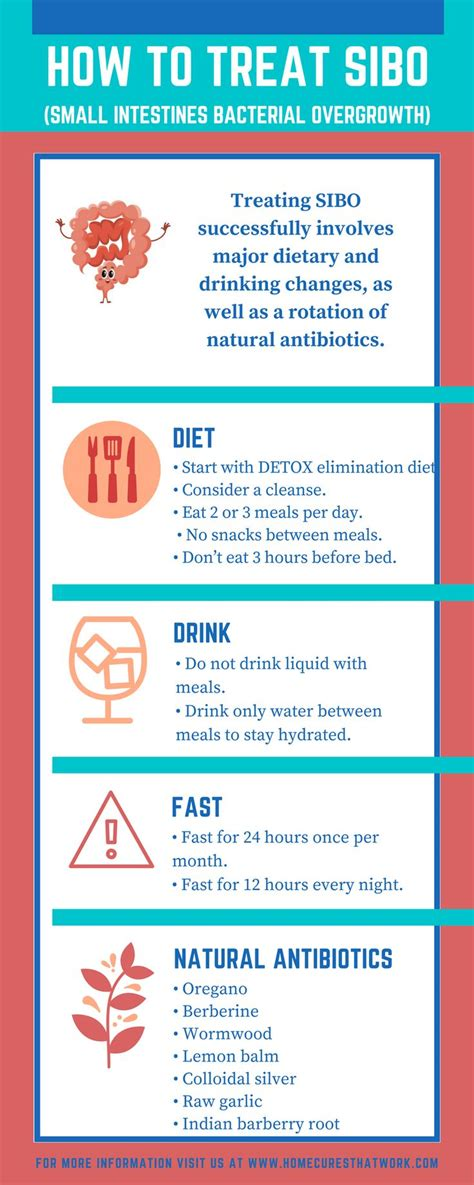 Low Fodmap Detox by 14 Best Sibo Diet Images On Fodmap Diet