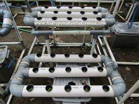 Jual Alat Hidroponik Bogor tanam daun mint hidroponik jual alat bahan media hidroponik