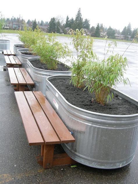 Trough Planters Metal by 84 Best Stock Tank Gardening Images On