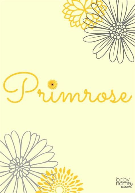 primrose meaning origin and popularity of the name it s one of the earliest flowers of the