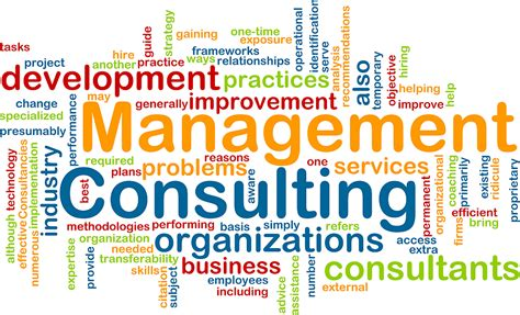 Consulting To Management why you need to a professional business management consultant web and mobile development
