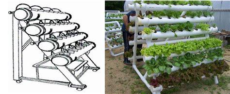Lettuce/strawberry/pod Pepper/ Celery Growing Greenhouse
