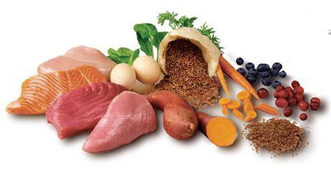 what are the ingredientsin plantabbs prolong all food nature select food