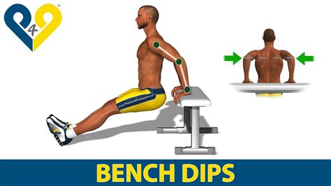 how to do bench dips how to do triceps dips on bench youtube