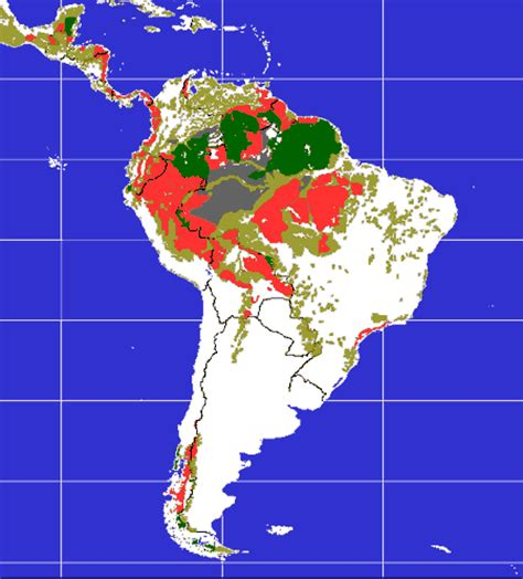 south america deforestation map latam threads causes and types of domestic land conflicts