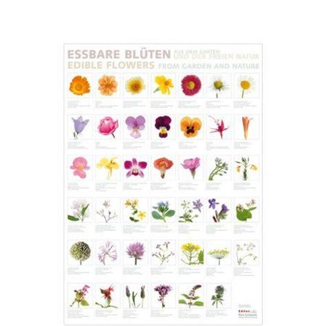 Kräuter Pflanzen Shop 982 by Ein Katalog Unendlich Vieler Ideen