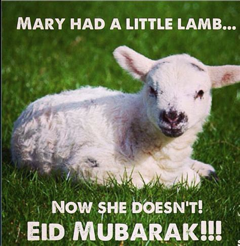 Eid Mubarak Meme - irreverence latest news breaking headlines and top