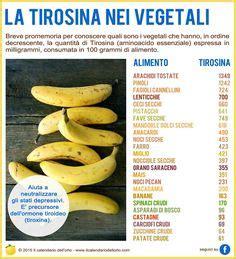 tirosina alimenti alimenti ricchi di vitamina a alimentazione e nutrienti