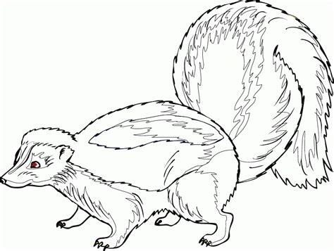 skunk printable coloring pages
