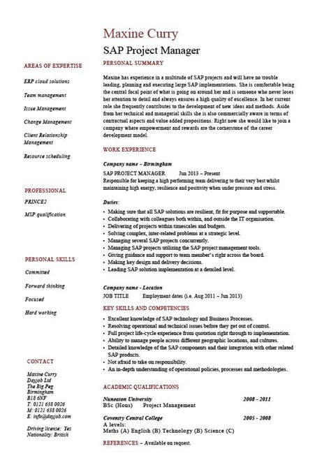 sap project manager resume sle description career history cv