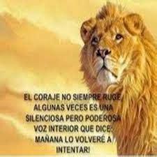 imagenes de leones con frases de amor resultado de imagen de coraje y coraz 243 n frases le 243 n