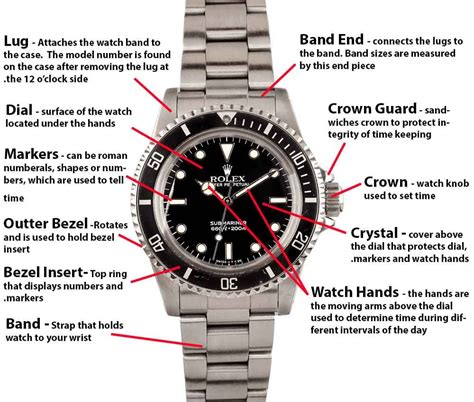 Expedition 6641mcrrgba Sea 1000 M Divers Gold Withe rolex submariner buying guide bob s watches