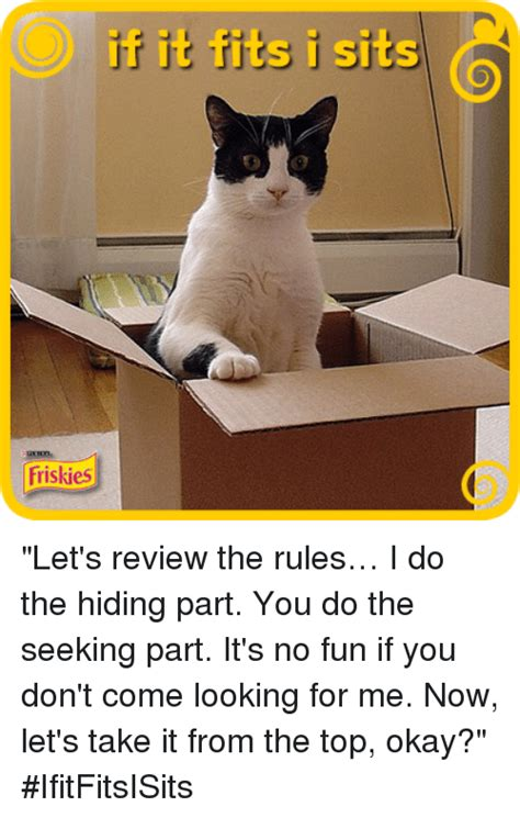 new you come to us for reviews now you can book your hotel right 25 best memes about if it fits i sit if it fits i sit memes