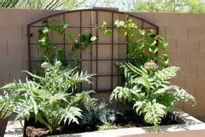 Garden Trellis Design Custom And Standard Metal Gardening Trellises