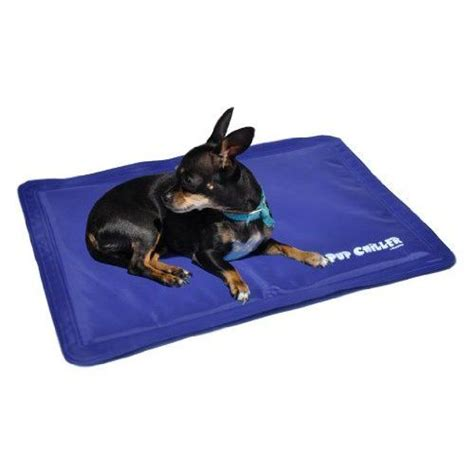Cool Mats For Dogs by 25 Best Ideas About Cooling Mat On Pet