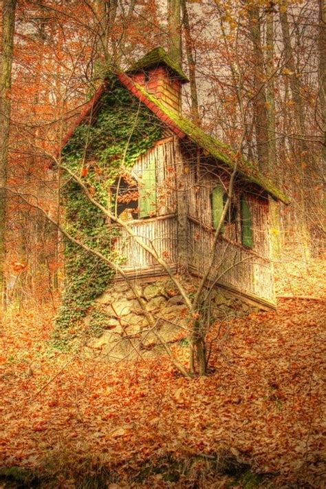 forest cottage germany travel germany austria