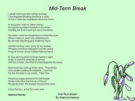 have at least one other person edit your essay about essay poetry day poetry ireland autos post
