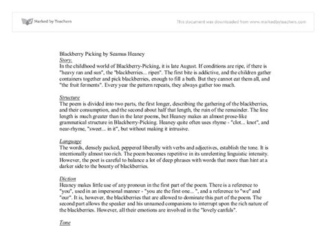 themes of blackberry picking analysis of blackberry picking by seamus heaney themes
