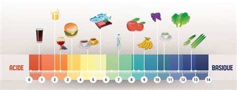 alimentazione acido basica r 233 tablissez votre 233 quilibre acido basique raidlight