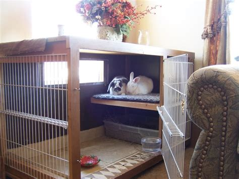 Gallery for gt homemade indoor rabbit hutch