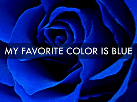 favorite blue about sam copley by samantha copley
