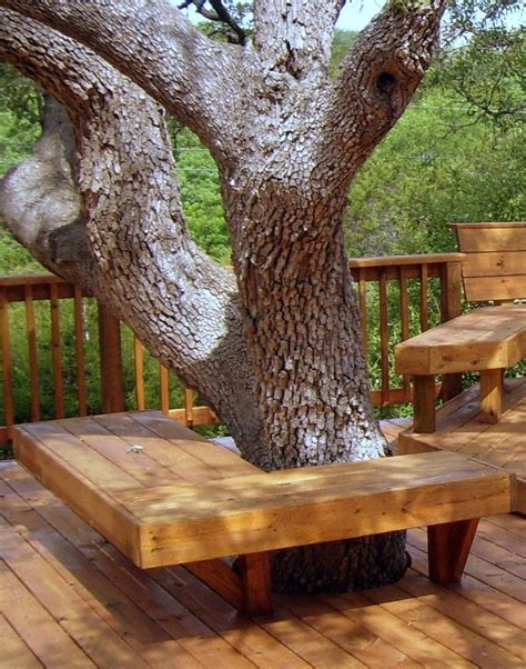 bench around a tree design 1000 images about tree seats benches on pinterest