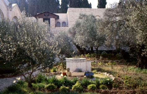 garten gethsemane land der bibel