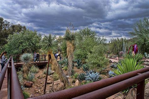 desert botanical garden coupons desert botanical garden coupon coupon codes promo codes