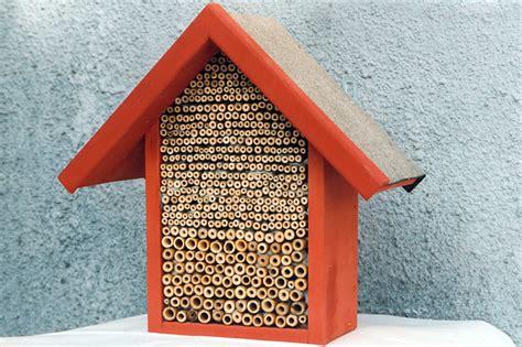 wildbienenhotel bauen anleitung anleitung insekten nisthilfen selbst bauen nabu