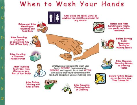 diseases from not washing hands after bathroom diseases from not washing hands after bathroom diseases
