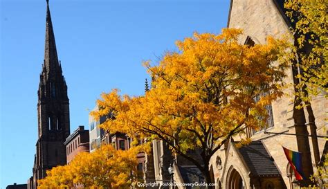 the brightest fell october boston fall foliage tours 7 best sites in the city