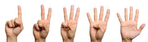 Finger Jari Tangan Terlaris renungan tentang jari tangan sesawi net