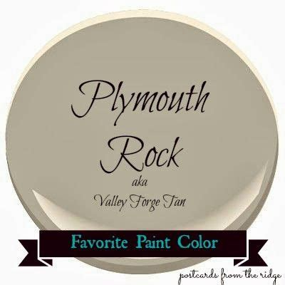 best 25 plymouth rock ideas on chicken breeds hens and fancy chickens
