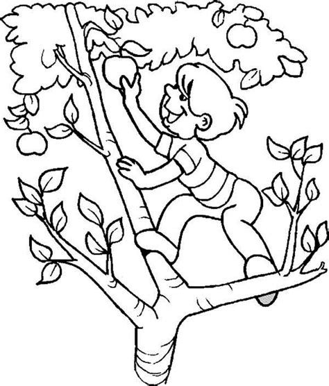 Apple Picking Coloring Page
