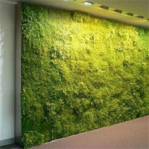 artikel cara membuat aquarium dinding keuntungan dan cara membuat dinding rumput kumpulan
